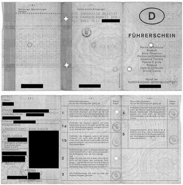Musterübersetzung Deutsch Französisch deutscher Führerschein